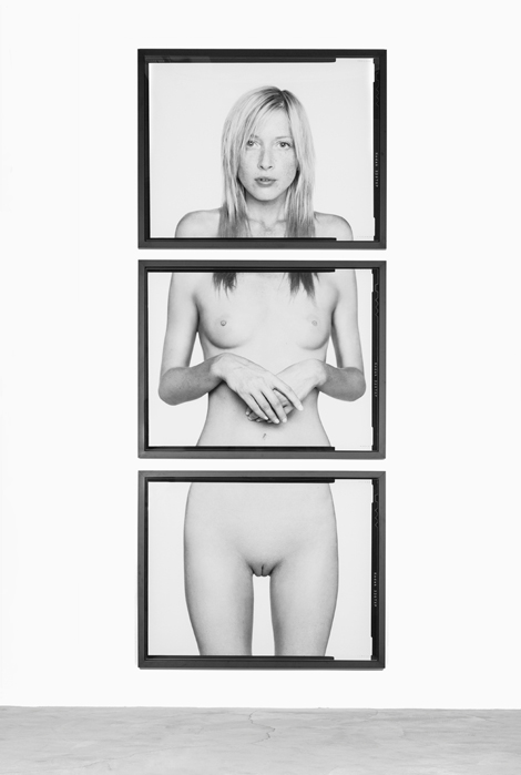 "SAMUEL BAYER jAnEllE 01 2012 PIGMENT PRINT 136.5"" X 54.5"" ED Samuel Bayer: Diptychs and Triptychs"