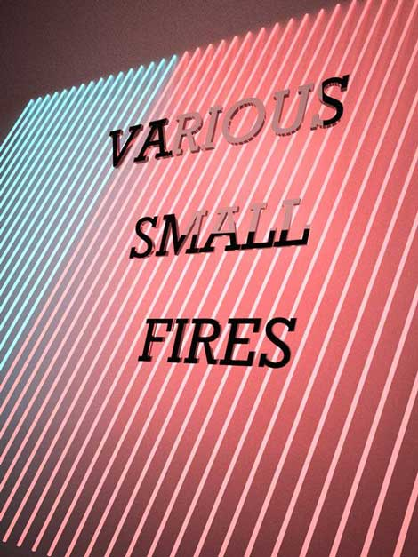Elizabeth Tremante, 2013, poster for Various Small Fires, courtesy of the artist