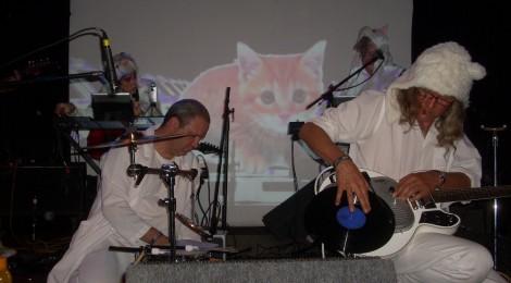 Krazy Kats – Cat Museum