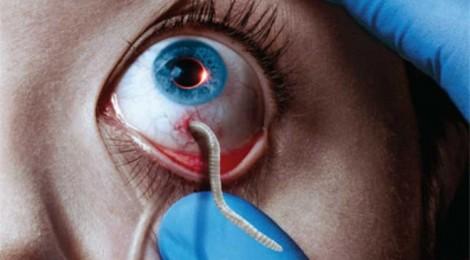 Eye-catching: The Strain