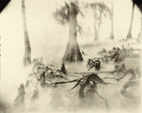 Mann Swamp Bones Deep South DS pa 69 BOOKS: Hold Still