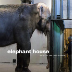 elephant house cover 150x150 <ns>Contents January 2016</ns>