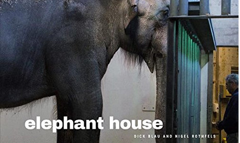 Elephant House, book cover.