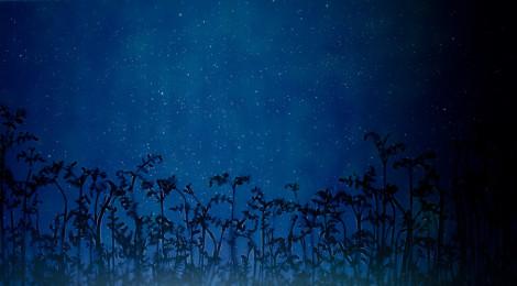 Susan Derges, Star Field – Bracken (2008), unique dye destruction print; Courtesy the Artist and Purdy Hicks Gallery, London