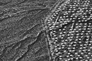 """Stillings Ivanpah 1 300x200 """"Everything is connected…."""" – Changing Circumstances:  Looking at the Future of the Planet –"""