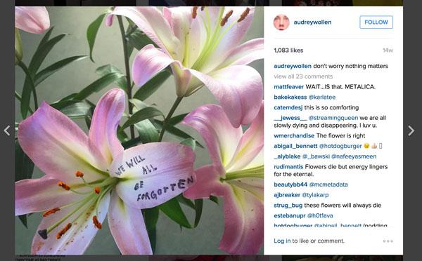 wollen flower writing Audrey Wollens Feminist Instagram World