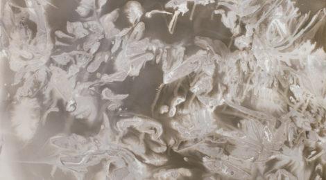 Rachelle Bussières, Caverne II, 2016, ©Rachelle Bussières, courtesy of Robert Koch Gallery, San Francisco.