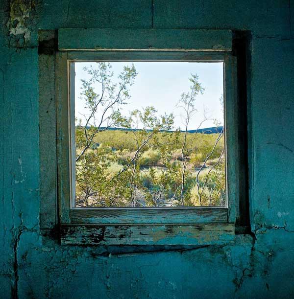 Osceola Refetoff Window with Creosote Bush Dunmovin CA 2010 Osceola Refetoff: A Room with a View