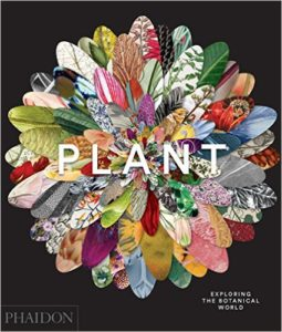 plant cover 2 255x300 <div class=offramp widget>Two Announcements and Two Visually Stunning Books</div>