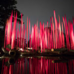 NYBG CHIHULY 02 Red Reeds on Logs 2017 150x150 <ns>Contents NOV 2017</ns>