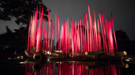 Dale Chihuly, Red Reeds on Logs, 2017