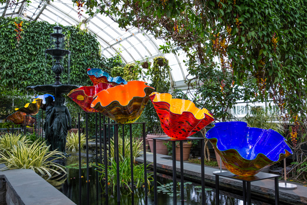 NYBG CHIHULY 09 Macchia Forest 2017 ART BRIEF