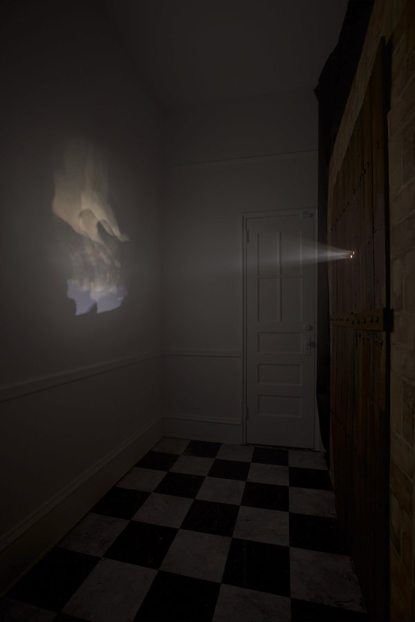 install6 web Camera Obscura: Duchamps Tortured Nude