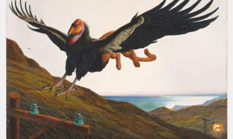 WaltonFord IslaCalifornia Gagosian 470x280 Walton Ford's Natural History for California Dreamers