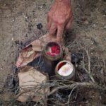 07 Osceola Refetoff Hobos Lunch Morro Bay CA 2012 150x150 CODE ORANGE: MAY/JUNE 2019