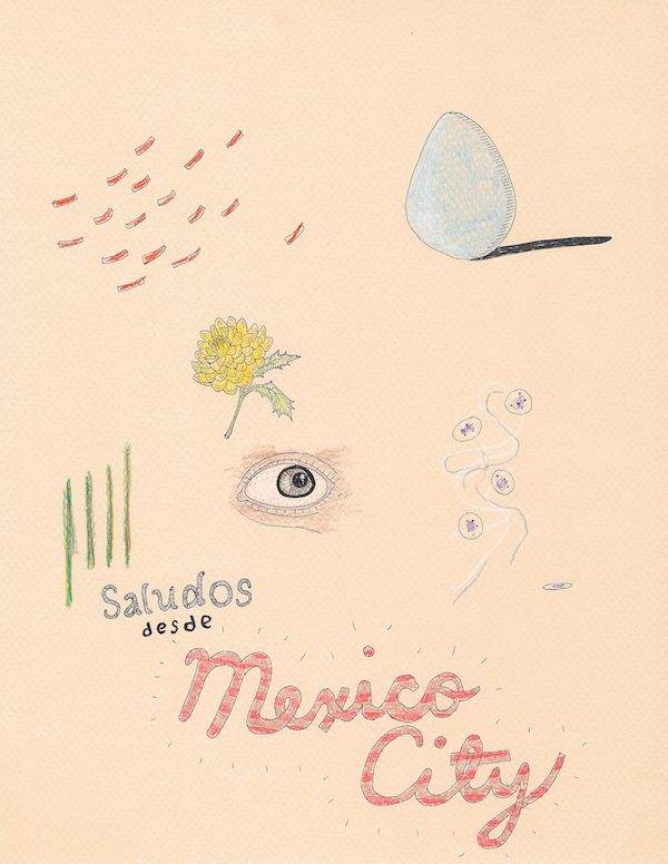 Illo by Frances Cocksedge copy Mexico City: Bursting with Vitality
