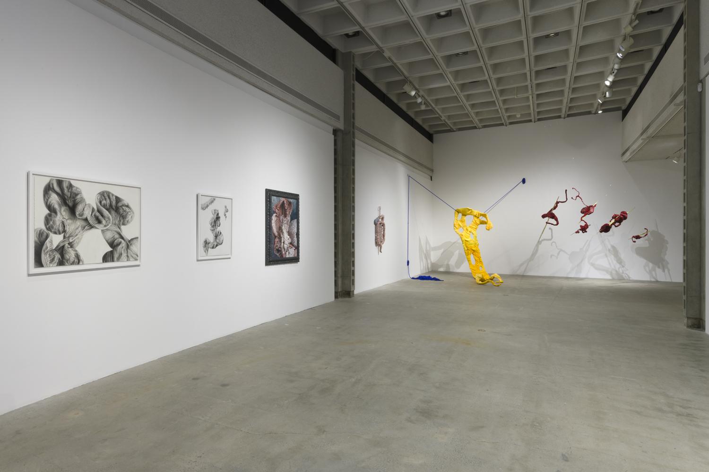 LA Municipal Art Gallery:  Offal