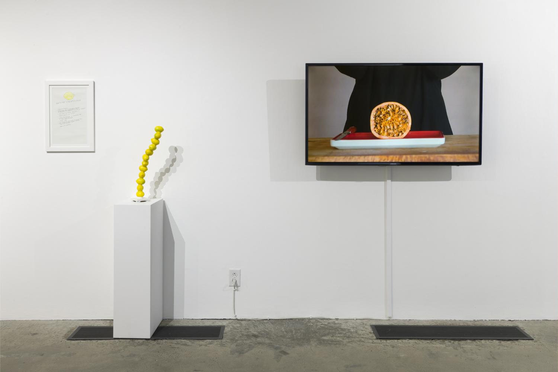 gloriagalvezGalleryPhoto<h6 class=sub> LA Municipal Art Gallery:</h6><h1 class=post title entry title>Offal</h1>