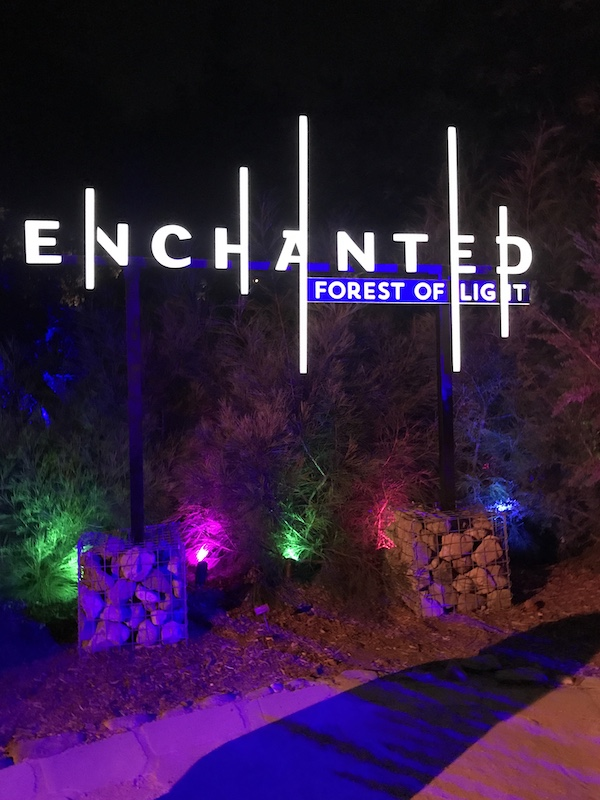 IMG 3590 November Nights Bring Bright Art